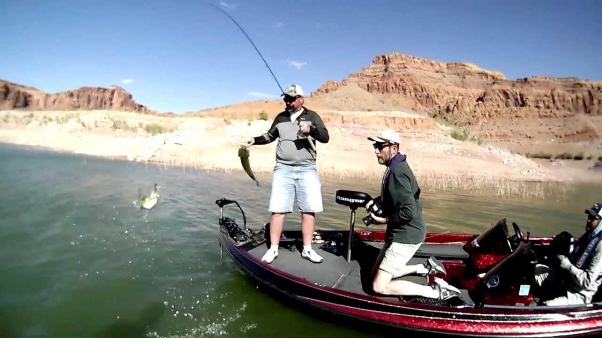 bass_boat_fishing