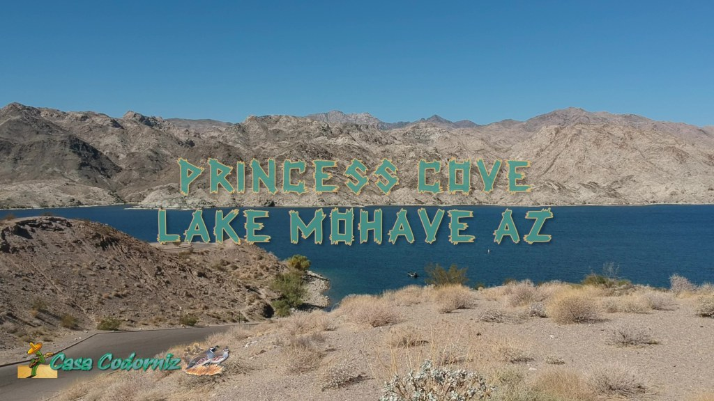 Princess-Cove-Lake-Mohave-Spark-10-13-2019