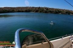 Bass-Fishing-Lake-Mohave-Hero9-04-19-2021-Jumping