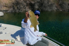 Bass-Fishing-Lake-Mohave-March-28-2021