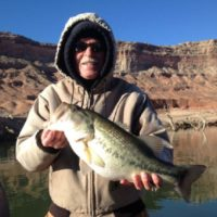 Lake_Mohave_Bass_Fishing_Guide
