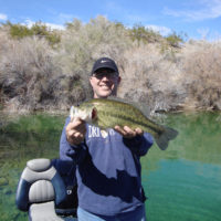 Lake Mohave Fishing Report
