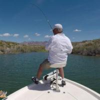 Lake Mohave Smallmouth Bass Fishing
