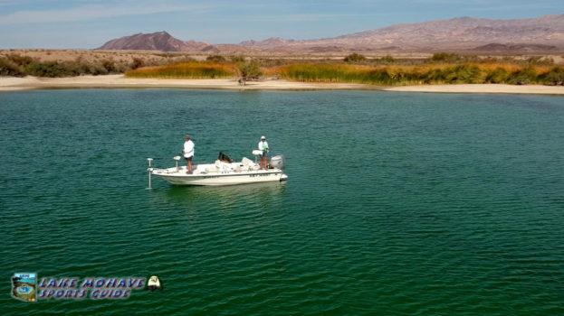 Bass-Fishing-Near-Cottonwood-Cove