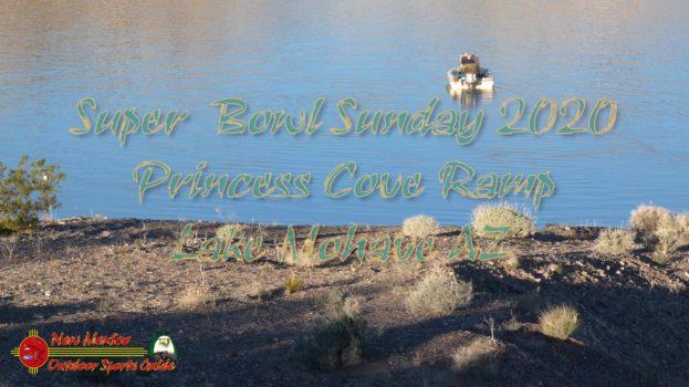 Super Bowl Sunday 2020