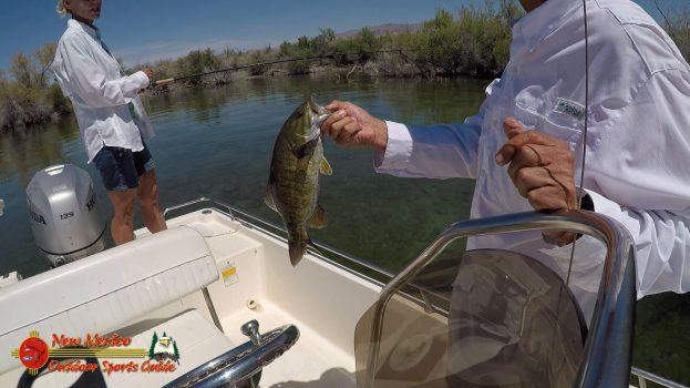 Bass Fishing Lake Mohave April 27, 2020