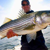 Colorado River Striper Fishing Davis Camp Bullhead City Arizona 10-13-2020
