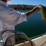 Bass Fishing Lake Mohave April 19, 2021