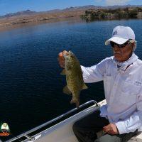 Lake Mohave Smallmouth Bass Fishing 04-07-2021