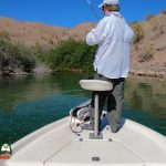 Bass Fishing Lake Mohave 04-15-2021