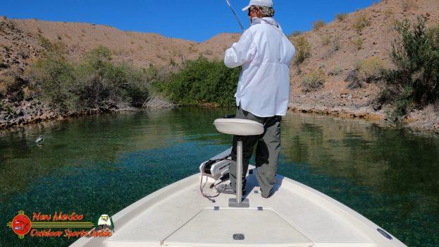 Bass Fishing Lake Mohave 04-15-2021